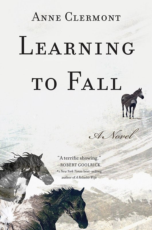 http://gosparkpress.com/product/learning-to-fall/
